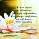Bom dia! Sábado repleto de Sol #energia  #equilíbrio #amor #harmonia
