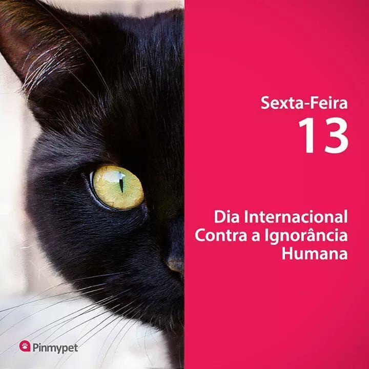 Booom Diaaa 🌸💗🌸 Bora trabalhar contra a ignorância de criaturas que se dizem humanas!!! 💋☕💋